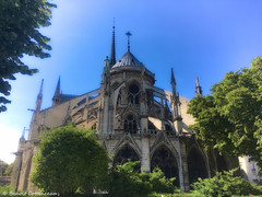 Arches of Notre-Dame - light and shadows (LUMEN SCRIPT) Tags: architecture paris church cathedral arches france light shadow