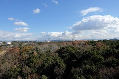 early winter (ababhastopographer) Tags: osaka senri cloud sky midday expo70commemorativepark landscape hill 大阪 千里 万博記念公園 雲 空 forest 林 park 公園 初冬 風景 遠望 丘陵