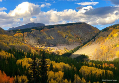 Fall Colour Just out of Durango from the Million Dollar Highway, Colorado, USA (Black Diamond Images) Tags: milliondollarhighway colorado durango usa sanjuanskyway aspen forest aspens sanjuanmountains westerncolorado panorama westernusatrip2018 2018 sky mountain autumncolour autumncolor autumn fallcolour fallcolor redmountainpass appleiphonex iphonex iphone tree wood landscape road mountainside hwy550 highway550 pine