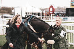 DSC_0979 (fullerton42) Tags: straftford racecourse stratfordracecourse horse horses racehorse horseracing race punter punters specatators sport equine england