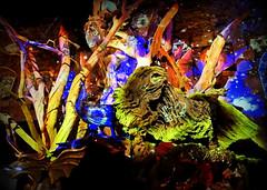 Jeu de la licorne (Raymonde Contensous) Tags: muséedesartsforains paris théâtredumerveilleux jeudelalicorne attractionforaine insolite bois boisflotté boisfiguratifs projectionslumineuses jeux
