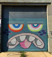 Mixed Emotions by Phetus (wiredforlego) Tags: graffiti mural streetart urbanart aerosolart publicart williamsburg brooklyn newyork nyc ny shutter phetus