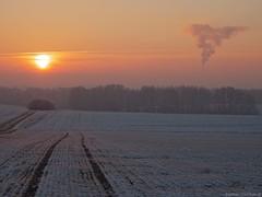 Frosty morning (damianziel) Tags: frost frozen winter flickr panasonic lumix lumixg panasoniclumixg g80 panasoniclumixdmcg80 dmcg80 lumixg80 mirrorless m43 mft microfourthirds micro43 panasonic1260mmf3556 kitlens panasoniclumixgvario1260mm3556asphpowerois sky cielo sunrise poland landscape landschaft ciel