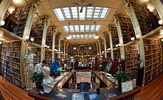 Sunday at the Library.  (wide angle) (WilliamND4) Tags: providence athenæum library nikon d810 wideangle books education