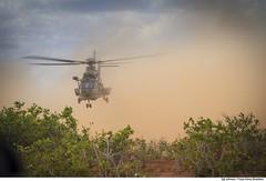 C-SAR - CRUZEX 2018 (Força Aérea Brasileira - Página Oficial) Tags: airbushelicopterh225m bra brasil brazil brazilianairforce csar cruzex cruzex2018 caracal eurocopterec725 fab forcaaereabrasileira forçaaéreabrasileira fotojohnsonbarros h36caracal helibras natalrn aeronave aicraft helicopter helicoptero rescue resgate natal rn 181126joh2852johnsonbarros