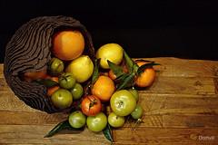 Agrumes et tomates vertes (DOMVILL) Tags: domvill wwwflickrcompeoplevildom naturemorte agrumes tomateverte bois fruits citron orange mandarine tomate france nord flandre