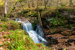 The river flowing into Black Spout (chris_rabe) Tags: pitlochry perthshire landscape nature water stream flowing blackspout unitedkingdom scotland waterfall river cairngorms outdoors europe view uk