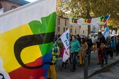 Foix (Ariège) (PierreG_09) Tags: ariège pyrénées foix pirineos action syndicat syndicalisme manifestation défilé revendication protestation couleurs banderole