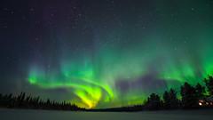 Aurore boréale prise depuis le fleuve Kemijoki (Jérôme LÊ) Tags: finlande laponie savukoski samperinsavotta finland lapland aurore auroreboreale aurora northernlights revontulet nikonpassion