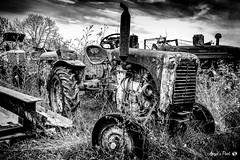 Tractheures (AngelsPixel) Tags: joséangeles bw black blackwhite blackandwhite blanc campagne champ country field mecanic mecanique mechanical monochrome nb noir noiretblanc noirblanc old paysan peasant tracteur tractor vieux white angelspixel joseangeles