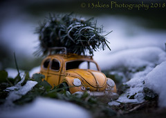 Getting Ready For Christmas (13skies) Tags: car christmastree vw volkswagen snow colder ice driving cuttingatree woods frozen christmas yellow bug beetle tree excursion fun familyouting together family love spirit happy joy roof