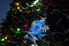 hd_20181203172853 (anatoly_l) Tags: russia siberia kemerovo city winter december 2018 snow christmas tree
