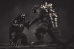 Challenge Accepted (3rd-Rate Photography) Tags: gamera godzilla kaiju ガメラ monster creature turtle shmonsterarts neca toy toyphotography actionfigure canon 100mm macro 5dmarkiii jacksonville florida 3rdratephotography earlware 365 blackandwhite bw