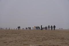DSC01815 (ZANDVOORTfoto.nl) Tags: beachlife strand aanzee december zandvoort nederland netherlands beachphoto strandfoto