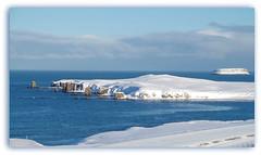 Sehnsucht nach Blau-Weiß (Körnchen59) Tags: island urlaub winter schnee meer snow sea blau weis blue white körnchen59 elke körner pentax ks2