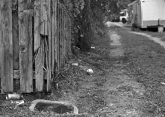 Bottles & Cans (PositiveAboutNegatives) Tags: nikon slr vintagecamera nikonf eyelevel plainprism 50mm 50mmf14nikkors nonai film analog bw blackandwhitefilm alley kentmere100 rodinal standdeveloping coolscan lakeworth florida
