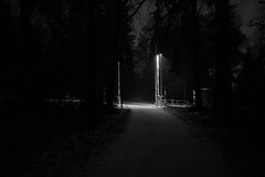 Bahnübergang (Toni_V) Tags: iphone xr apple iphoneography szu nightshot night uetliberg winter bw monochrome blackwhite schwarzweiss zurich zürich switzerland schweiz ©toniv 2019 190126