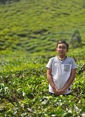 Faris (crop) (faris-budak-besar) Tags: cameron highlands tea plantation
