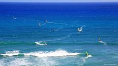 Windsurfers off Koko Head, from Scenic Kalaniana'ole Highway, Oahu, Hawaii (Black Diamond Images) Tags: easternoahushorelinetour enoatours honolulu hawaii usa windsurfers kokohead scenic kalaniana'olehighway oahu windsurfing waves surf westernusatrip2018 2018 canond60 1770 sigma1770