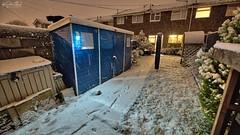 Snowy Bottom (AreKev) Tags: januarysnow snow snowy snowfall cold winter gardenshed shed ourgarden backgarden garden whitchurch bristol somerset southwestengland england uk nikond850 nikon d850 aurorahdr2018 hdr aurorahdr sigma1424mmf28dghsmart sigma 1424mm 1424mmf28dghsm