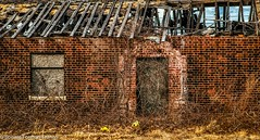 ABANDONED BUILDING-2019-03-13_D85_5334 (Bonnie Forman-Franco) Tags: abandoned abandonedphotography abandonedphoto abandonedbuilding abandonedbuildings decayed rottedwood rottedroof photoladybon hdr hdrphotography aurorahdr2019 windows doors birdnest nikon nikonphotography nikond850 nikon2470 nikcollection weeds boardedbuildings