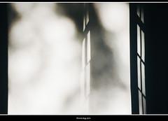 assenze (magicoda) Tags: italia italy magicoda foto fotografia venezia venice brenta veneto nikon d750 dslr maggidavide davidemaggi 2018 passione passion tramonto luce light emozione streetlight sunset emotion nuvole clouds rivieradelbrenta stra pisani villa parco park upskirt candid voyeur nowife riflessi reflexion bianco nero white black bn bw blackwhite blackandwhite finestra window blur sfocato atmosfera ombre shadows riviera ghiacciaia ice