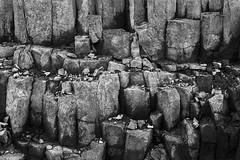 Sedementary Rock Wall Quarry (Jim Corwin's PhotoStream) Tags: abundance agingprocess archaeology backgrounds beautyinnature boulderrock cliff crustgeology environment environmentalconservation extremeterrain geology horizontal layered mineral miningnaturalresources naturalcondition naturalpatterns nature naturepatterns natureshapes nobody photography quarry rockformations rockobject rockquarry rockstata rockwall rocks rough sanstone sedimentaryrock shadows slaterock stone stonematerial testured weathered