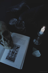 der Teufel (Wolf's Kurai) Tags: wolfkurai wolfskurai photography death book teufel evil demon tarot card candle dryflowers raven animal darkartist darkart darkritual