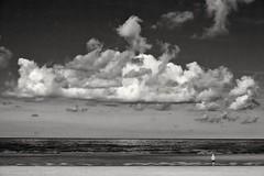 Contemplation (Val'Art Photography) Tags: blackandwhite noiretblanc monochrome plage mer beach cloud nuages paysage côtedopale