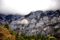Foggy top (BDFri2012) Tags: mountains cliff trees ouray colorado fog rockformation fallcolor fallcolors fall landscape forest