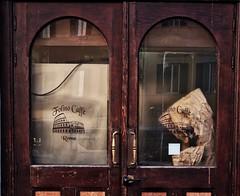 Cafè in Rome (GiòPhotos ( GioviTheVet )) Tags: door porta streetphotography street italy italia rome roma