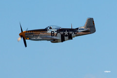 180822_27_ACAS_BaldEagle (AgentADQ) Tags: atlantic city new jersey 2018 air show airshow flying airplane north american p51d mustang baldeagle