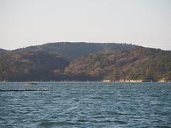 PB114568 (senngokujidai4434) Tags: 日本三景 島 island 松島 matsushima 宮城 miyagi japan japanese