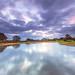 Mogshade Pinks (nicklucas2) Tags: newforest landscape cloud water mogshade pond