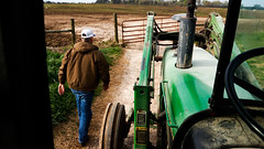 Stewart leaves his tractor to go open the gate to the pasture to feed his cows.