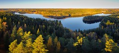 Peaceful panorama lake view with fall colors at Aulanko nature park in Finland (Digikuvaaja) Tags: europe finland aerialview artistic autumn background banner beautiful blue calm calmwater clear dawn destination dramatic environment evening fall forest green idyllic lake landscape light majestic natural nature nordic north outdoor panorama panoramalandscape panoramic park peaceful reflection scenery scenic serene sky summer sunlight sunny sunset sunsetlandscape tranquil travel trees water weather
