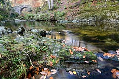 Tollymore forest. (carolinejohnston2) Tags: autumn river water rock leaves reflection woods bridge ireland codown