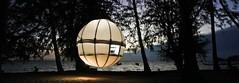 #Cocoon Tree Village concept, for #luxury #Glamping http://bit.ly/2nlitcB (Skywalker Adventure Builders) Tags: high ropes course zipline zipwire construction design klimpark klimbos hochseilgarten waldseilpark skywalker