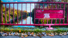 Auf der Brücke (floerioHH) Tags: 2018 autumn hamburg barmbeksüd city autumncolors xh1 fujixseries fujifilm herbst herbstfarben hdr