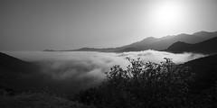 Sea of clouds (Michel Couprie) Tags: europe france corsica corse montagne mountain clouds nuages seaofclouds noiretblanc nb bw blackandwhite sun sunrise canon eos couprie tse24mmf35l panorama paysage landscape