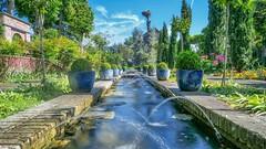 Pairi Daiza - 6245 (ΨᗩSᗰIᘉᗴ HᗴᘉS +37 000 000 thx) Tags: hdr pairidaiza lx15 water fountain fontaine hens yasmine namur belgium europa aaa namuroise photo friends be yasminehens interest eu fr lanamuroise