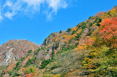 Nikkō (日光市) Town | Tochigi, Japan (Ping Timeout) Tags: nikkō 日光市 town city tochigi prefecture japan nikko north west season visit travel autumn fall outdoor hill colour color hillside drive stop lookout skies blue sky cloud clear day nippon holiday 東京 日本 october 2018 vacation explore scene scenery sight beautiful amazing green greenery vegetation forest 栃木県 unesco world heritage site helicopter heli flight