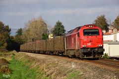 Caminha (REGFA251013) Tags: takargo tren train comboio madera galicia mercancias portugal caminha