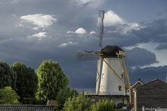 Moulin de  Wemeldinge (musette thierry) Tags: moulin mill musette thierry blanc nikon d800 tamron wemeldinge paysbas holande vue