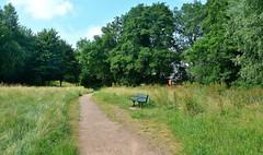 33374 (benbobjr) Tags: ledbury herefordshire midlands westmidlands mercia england english uk unitedkingdom gb greatbritain liedeberge town urban riversidepark park path pathway footpath