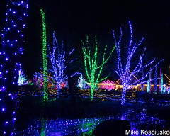 915A6283 (mikekos333) Tags: 2018 december christmas christmaslights coastalmainebotanicalgardens boothbay