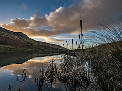 Wimberry Rocks - Chew Valley (Craig Hannah) Tags: chewvalley saddleworth dovestones pennine peakdistrictnationalpark rspb uplands moorland westriding yorkshire oldham greenfield greatermanchester england uk craighannah photography canon photos january 2019 wimberry indianshead rocks landscape reflection clouds sky pond water winter
