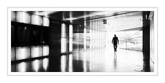 Porto; Casa Da Musica (drasphotography) Tags: porto portugal casa da musica monochrome monochromatic monotone drasphotography blackandwhite bianconero schwarzweis man contrast urban nikon d810 nikkor2470mmf28 frame rahmen