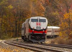 CDOT GE P32AC-DM (231) (MadMartigen) Tags: metronorthrailroad transportation train railroad amtrak amtk locomotive gep32acdm genesis ge generalelectric gegenesis p32acdm ny newyork fall autumn cdot