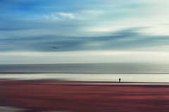 a silent walk (Dyrk.Wyst) Tags: abstract minimal texture conceptual 2017 atlantik bassenormandie cotentin france frankreich landschaft meer normandie reise reiseziel strand atmosphere beach coast strolling evening horizon iphone6s landscape lowtide mood sea serene sky solitude travel traveldestination composition fineart minimalism motionblur barnevillecarteret fr